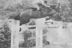 1980 (3)