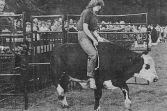 1980 (5)