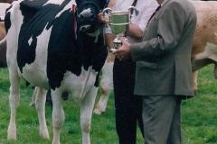 1993 (5)