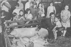 1973 (3)
