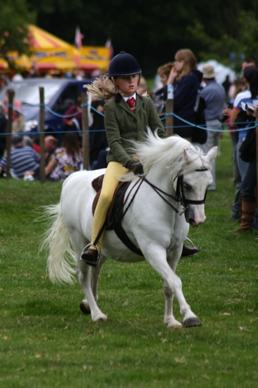 Canwell_Show_2010_Gallery_12