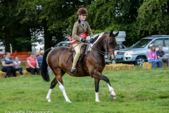 Canwell_Show_2014_Gallery_1
