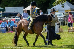 Canwell_Show_2014_Gallery_3