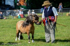 Canwell_Show_2014_Gallery_4
