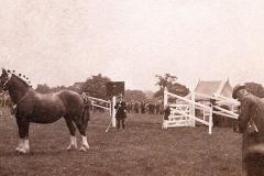 1926 (3)